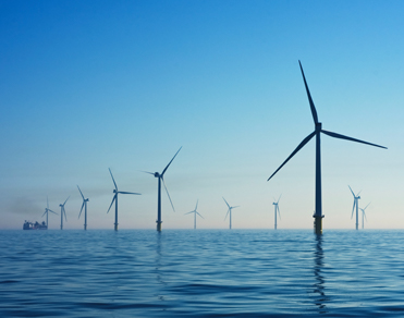 Offshore wind farm is shown.
