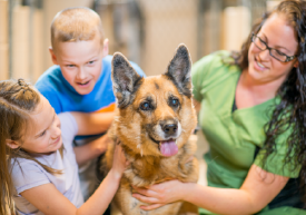 Children with a German Shephard