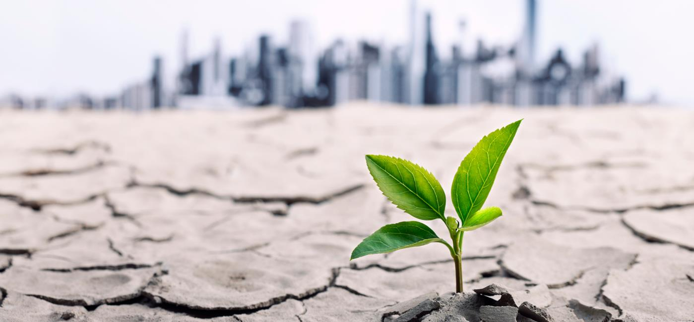 PSEG Chairman, President and CEO Ralph Izzo's LinkedIn article to learn more about his 5 Things to Tackle Climate Change – a climate strategy that fits on one hand.